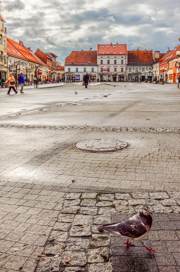 stare miasto w mikołowie - rynek
