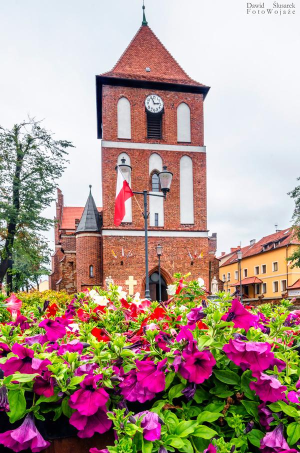 kościół w tolkmicku