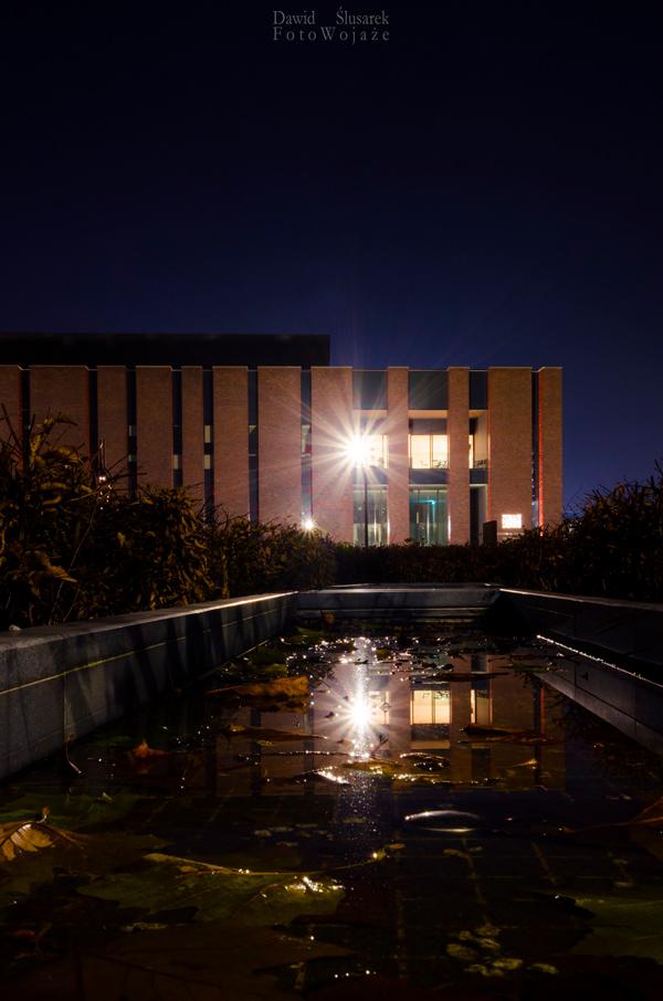 jak robić dobre zdjęcia nocą