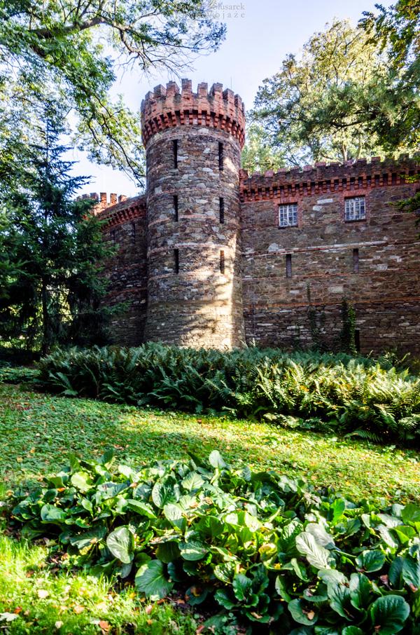 zamek w kamieńcu ząbkowickim